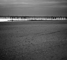 Desolation Row by Rebecca Finch