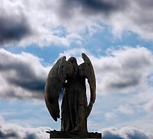 back view of angel statue in cobh by morrbyte