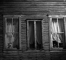 Windows by Matt Farley