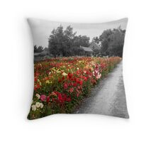 Dutch Flowers, in color Throw Pillow