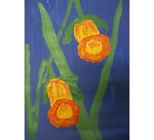 Yellow Daffodils on Blue Photographic Print