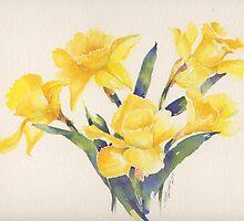 Daffodil by Nora Mackin