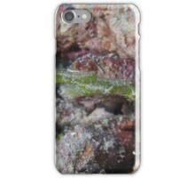Ghost Pipefish iPhone Case/Skin