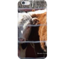 Mo's View of Bodacious Bovines  iPhone Case/Skin