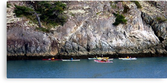 Bowman Bay Kayakers One by Rick Lawler