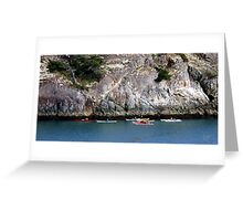 Bowman Bay Kayakers One Greeting Card