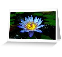 Water Lilly Two Greeting Card