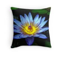 Water Lilly Two Throw Pillow