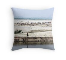 Cattle herders on the banks of India's Brahmaputra River, in Assam. Throw Pillow