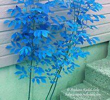 Blue Autumn by Stephanie Rachel Seely