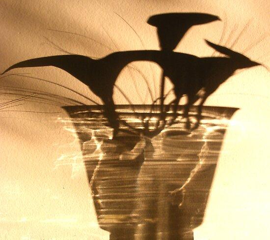 SHADOW by gracestout2007