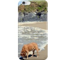 wild atlantic way castle and dog iPhone Case/Skin