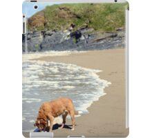 wild atlantic way castle and dog iPad Case/Skin