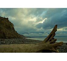 Driftwood Photographic Print