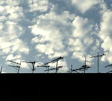 Television antennas by Dentanarts