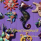 Hippocampus by Alice Kahn