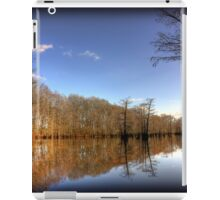 Calm Bayou iPad Case/Skin