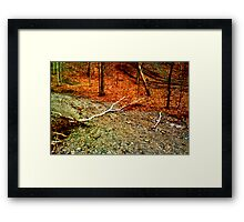 FIRE PATH Framed Print