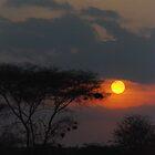 african sunset by karen peacock