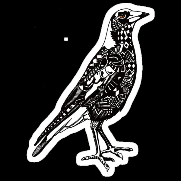 Australian Magpie by Jason Embery