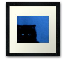 kitty at night Framed Print