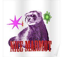 NIce Marmot Poster