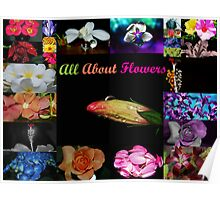 Beauty in Flowers. Poster