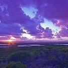 Sunrise near Leeman by Naomi Brooks
