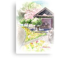 Spring in Maxell Cherry Gardens Canvas Print