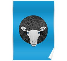 Funky Sheep Poster