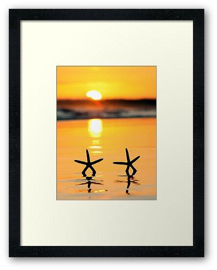 Sunset Starfish by Annette Blattman