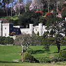 Caerhays castle, cornwall, England  by 1throughmyeyes