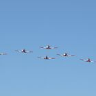 Roulettes by BarbJK