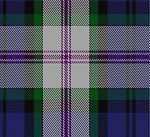 00383 Baird Dress Family Tartan  by Detnecs2013