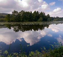 Water Reflection by jammysam1680