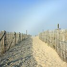 Nauset Beach by capecodart