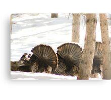 Mooned!.....by wild Turkeys Metal Print