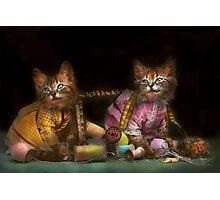 Cat - Mischief makers 1915 Photographic Print