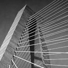 Towers and Cables (B&W) by John  Kapusta