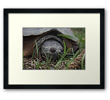 Come a little closer! Framed Print