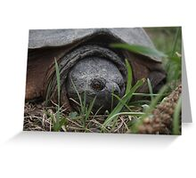Come a little closer! Greeting Card
