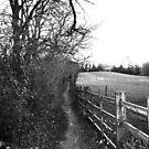 B & W Pathway by shakey123