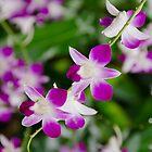 Purple Rain Duvet Cover by Kasia-D