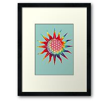 Flower of Life (tie-dye sun) Framed Print