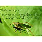 Oh Grasshopper! by Gaia Vision