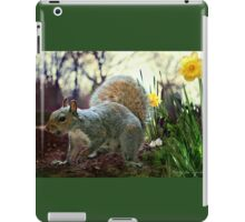 Harry in Spring iPad Case/Skin