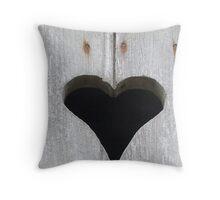Wooden Shutter Throw Pillow