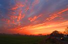 Sunset Over Harlow Common by Nigel Bangert