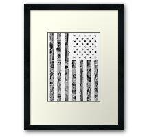 American Flag Money Framed Print