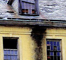 Burned Out Mental Institution by gayle hoskins-nestor